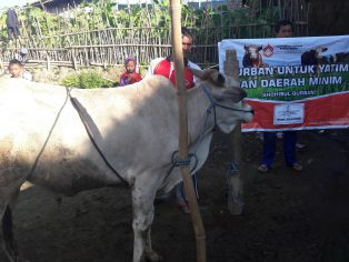 Penyaluran hewan kurban di Selo, Boyolali